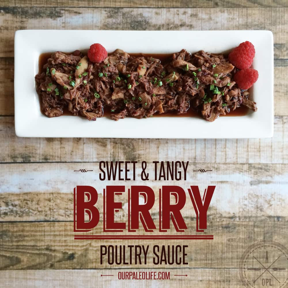 Sweet & Tangy Berry Poultry Sauce | Our Paleo Life