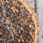 Chocolate Pecan Pie | Our Paleo Life