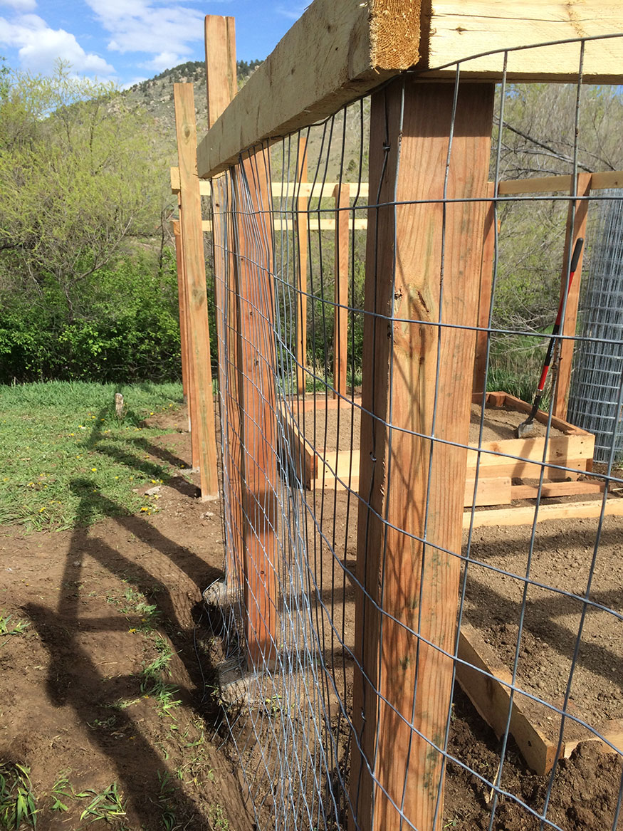 Welded Wire Install for Garden Fence