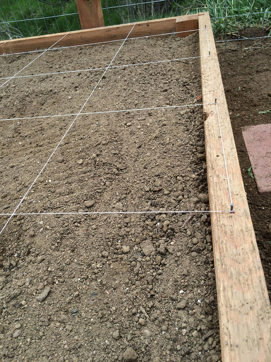 Square Foot Garden Layout