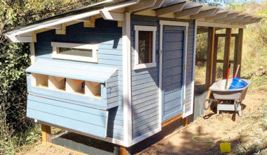 Chicken Coop DIY Inspiration