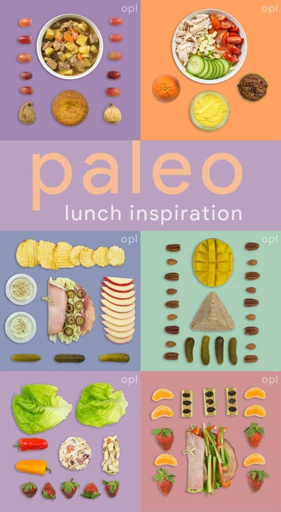 Paleo Lunch Inspiration (Quick & Easy Lunches)