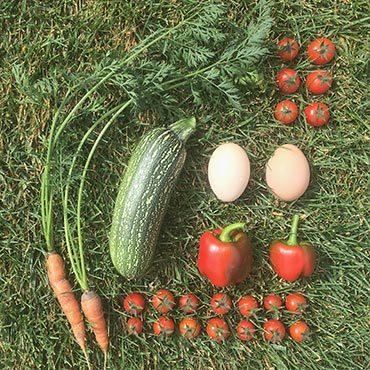 Colorado Gardening Rewards