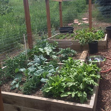 Colorado Vegetable Garden High Elevation Gardening What