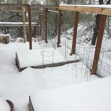 Late April Snowfall