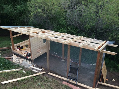 Chicken Coop and Run view with New Siding