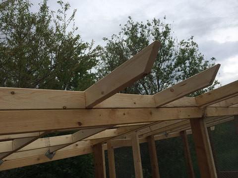 Design for Chicken Coop Roof