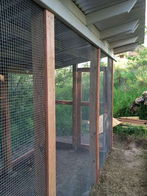 Finalized Chicken Run Construction