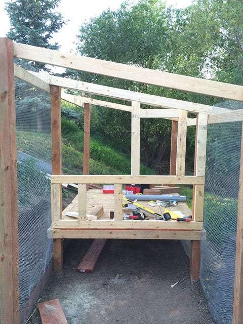 Framing the Chicken Coop Walls