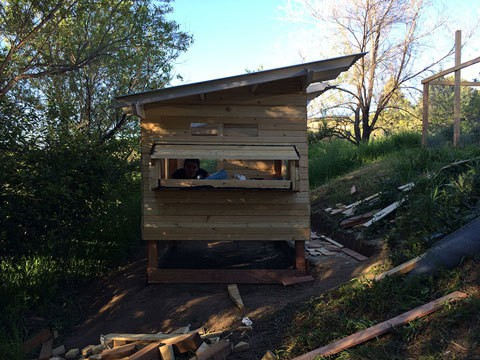 Nesting Box Addition Build and Peek a boo