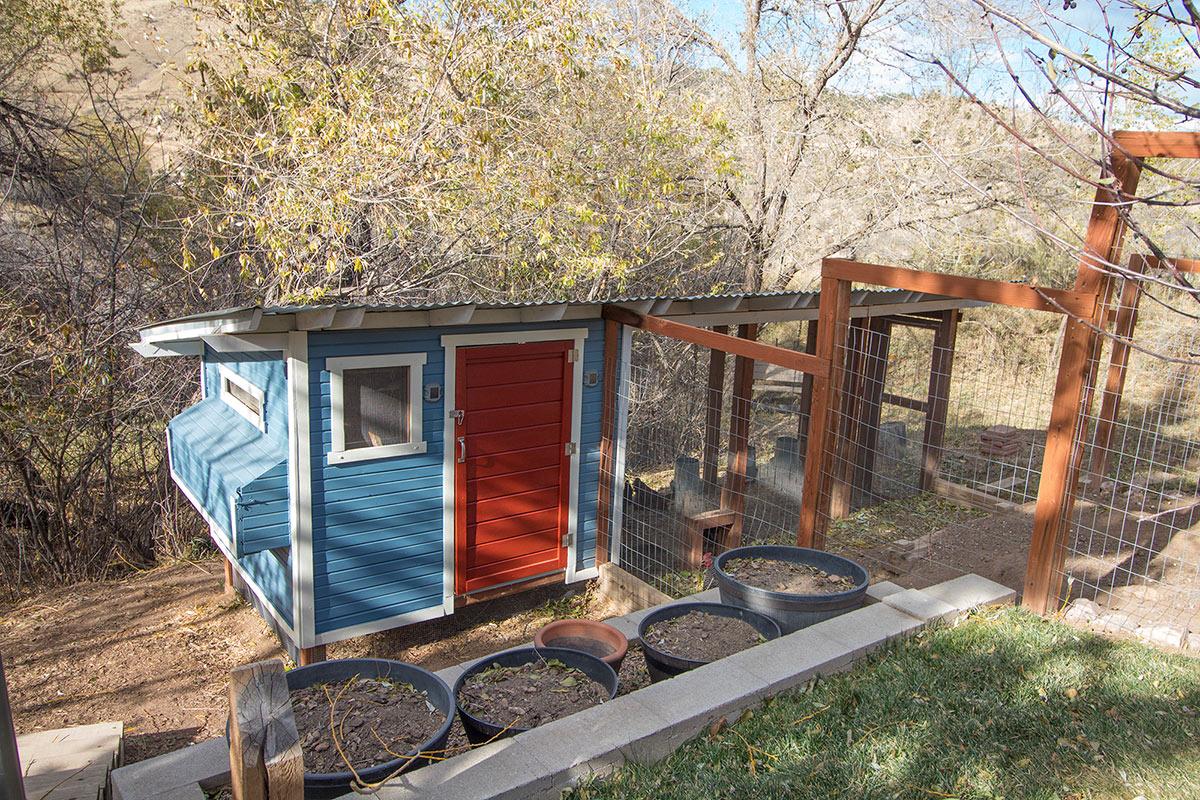 Backyard Chicken Coop Build