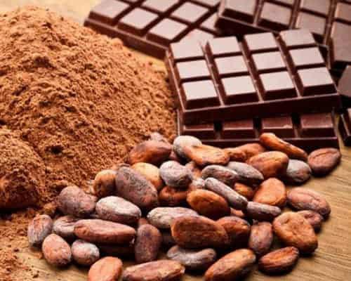 Cocoa & Cacao
