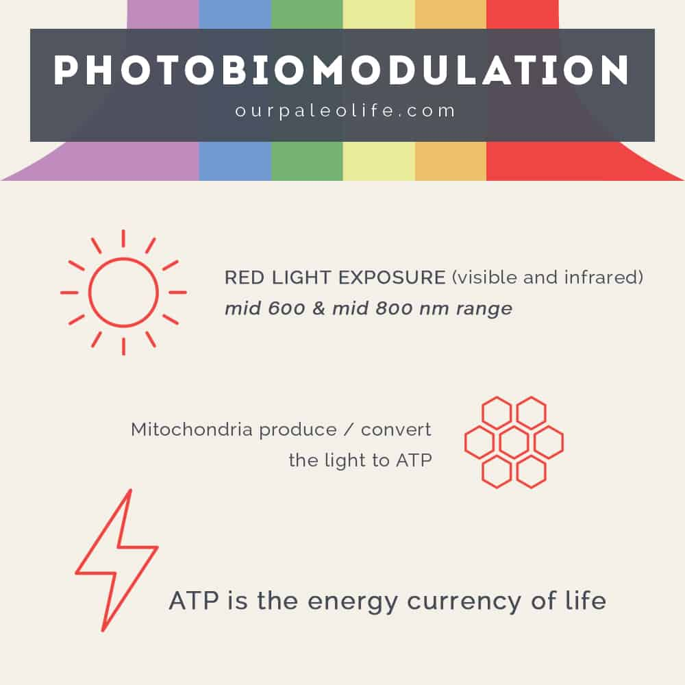 Red Light Therapy - PBM - Photobiomodulation - Complete Guide