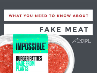 What you need to know about fake meat